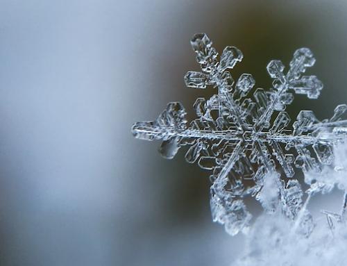 L'hiver 2018-2019 sera t-il froid ?