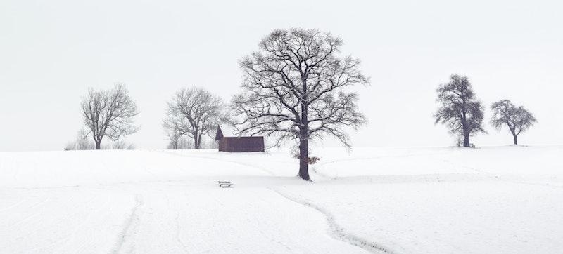 Hiver 2019 : Froid et neige sont-ils prévus ?