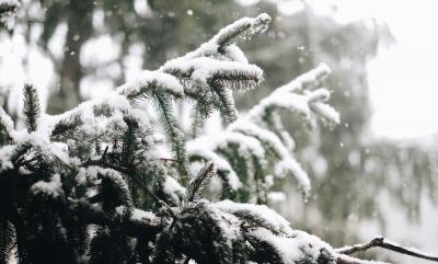 Faut-il éteindre sa chaudière pendant les vacances d'hiver ?